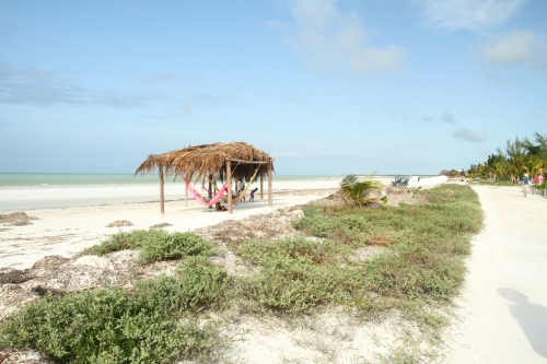 One way to kill a few hours in Holbox